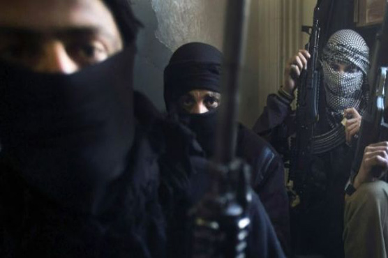 US fails to rescue hostages from Syria