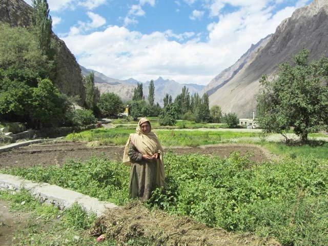 پانی کی پائپ لائن ، جس نے پاکستانی گاؤں میں امن قائم کردیا
